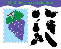 Find the correct shadow, educational game for kids. Bunch of grapes fruit. Vector illustration Royalty Free Stock Image