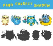 Find the correct shadow educational game for kids with owls. Vector colorful activity.  Stock Images