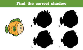 Find the correct shadow (fish) Stock Photo