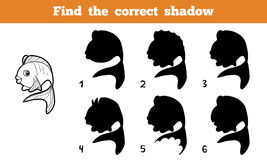 Find the correct shadow (fish). Game for children: Find the correct shadow (fish Royalty Free Stock Photography
