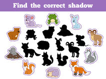 Find the correct shadow (forest animals). Find the correct shadow, game for children (forest animals Royalty Free Stock Images