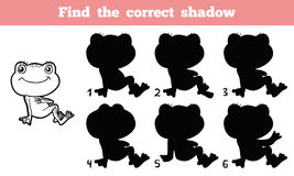 Find the correct shadow (frog). Game for children: Find the correct shadow (frog Royalty Free Stock Photo