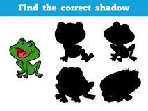 Find the correct shadow (frog) Stock Photography