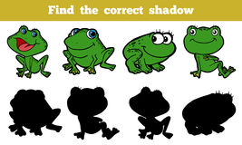 Find the correct shadow (frog). Game for children: Find the correct shadow (frog Royalty Free Stock Photography