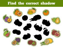 Find the correct shadow (fruits). Find the correct shadow, education game for children (fruits Stock Photo
