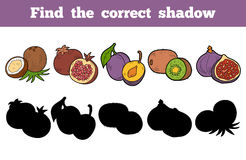 Find the correct shadow (fruits). Find the correct shadow, education game for children (fruits Royalty Free Stock Images