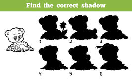 Find the correct shadow. Game for children: Find the correct shadow (bear Stock Photography