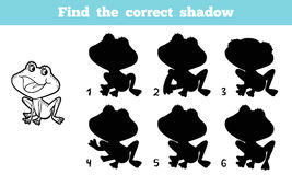 Find the correct shadow. Game for children: Find the correct shadow (frog Stock Photography
