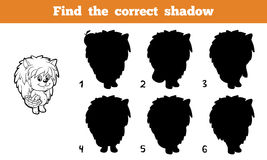 Find the correct shadow. Game for children: Find the correct shadow (hedgehog Royalty Free Stock Image