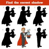 Find the correct shadow, game for children, Illusionist. Find the correct shadow, education game for children, Illusionist Stock Photos