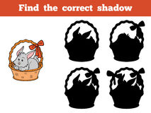 Find the correct shadow Stock Images