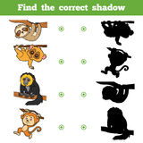 Find the correct shadow, game for children. Set of animals. Find the correct shadow, education game for children. Vector set of animals Stock Image