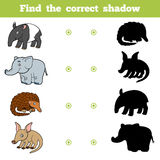 Find the correct shadow, game for children. Set of animals. Find the correct shadow, education game for children. Vector set of animals Royalty Free Stock Photography