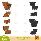 Find the correct shadow, game for children, Set of bears royalty free illustration