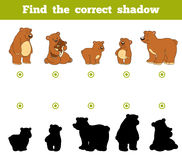 Find the correct shadow, game for children. Set of cartoon bears. Find the correct shadow, education game for children. Set of cartoon bears Royalty Free Stock Photos