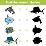 Find the correct shadow, game for children. Set of sea animals. Find the correct shadow, education game for children. Vector set of sea animals Stock Photo