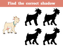 Find the correct shadow (goat). Game for children: Find the correct shadow (goat Royalty Free Stock Images