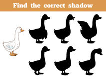 Find the correct shadow (goose). Game for children: Find the correct shadow (goose Stock Photography