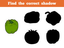 Find the correct shadow (green pepper). Find the correct shadow, education game for children (green pepper Royalty Free Stock Images