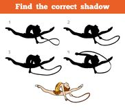Find the correct shadow, The gymnast with a rope. Find the correct shadow, education game for children, The gymnast with a rope Stock Photo