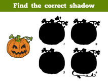 Find correct shadow: Halloween pumpkin. Find correct shadow, game for children: Halloween pumpkin Royalty Free Stock Images