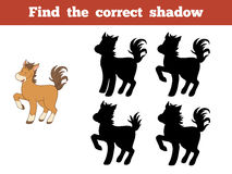 Find the correct shadow (horse) Royalty Free Stock Photography