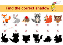 Find correct shadow. Kids educational game. Forest animals. Fox, rabbit, hedgehog, raccoon, squirrel, owl. Find correct shadow. Kids educational game. Forest stock illustration