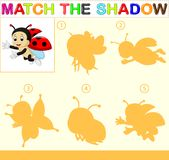 Find the correct shadow of the ladybug. Illustration of Find the correct shadow of the ladybug Royalty Free Stock Image