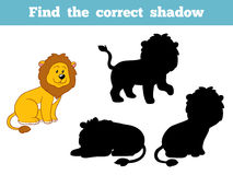 Find the correct shadow (lion) Stock Images