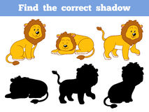 Find the correct shadow (lion). Game for children: Find the correct shadow (lion Stock Image