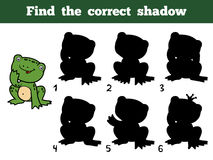 Find the correct shadow. Little frog. Find the correct shadow, education game for children. Little frog Royalty Free Stock Photography