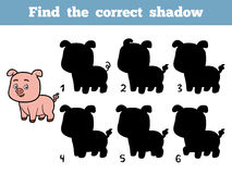 Find the correct shadow. Little pig. Find the correct shadow, education game for children. Little pig Royalty Free Stock Photos