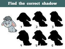 Find the correct shadow. Little rabbit. Find the correct shadow, education game for children. Little rabbit Stock Photography