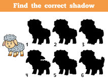 Find the correct shadow. Little sheep. Find the correct shadow, education game for children. Little sheep Royalty Free Stock Images