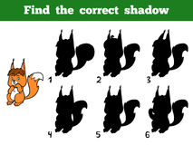 Find the correct shadow. Little squirrel. Find the correct shadow, education game for children. Little squirrel Royalty Free Stock Photos