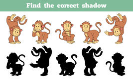 Find the correct shadow (monkey). Game for children: Find the correct shadow (monkey Stock Images