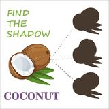 Find the correct shadow nuts. Find the right shade nuts. Set to find the right shadow matching educational baby game to compare and connect objects and their Stock Photography