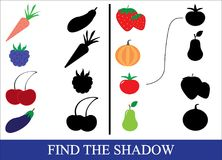Find the correct shadow of objects of vegetables, berries and fr. Uits. Game for preschool children Royalty Free Stock Photo
