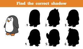 Find the correct shadow (penguin). Find the correct shadow, education game for children (penguin Royalty Free Stock Photo