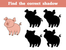 Find the correct shadow (pig). Game for children: Find the correct shadow (pig Royalty Free Stock Photos
