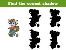 Find the correct shadow (rabbit and bicycle) Stock Photos