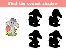 Find the correct shadow (rabbit and flower) Stock Images