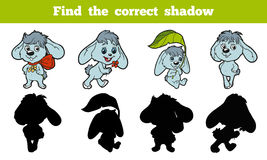 Find the correct shadow (rabbit). Game for children: Find the correct shadow (rabbit Royalty Free Stock Images