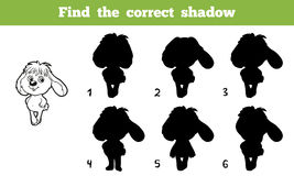 Find the correct shadow (rabbit) Royalty Free Stock Photography