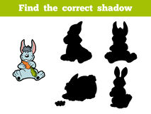 Find the correct shadow (rabbit) Stock Photography