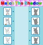 Find the correct shadow of the rabbit. Illustration of Find the correct shadow of the rabbit Royalty Free Stock Images