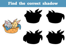Find the correct shadow (rabbits in basket) Stock Photo