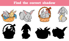 Find the correct shadow (rabbits set). Game for children: Find the correct shadow (rabbits set Stock Photography