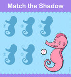 Find the correct shadow sea horse kids puzzle Stock Images