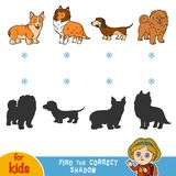 Find the correct shadow. Set of dogs. Find the correct shadow, education game for children. Set of dogs Royalty Free Stock Photo